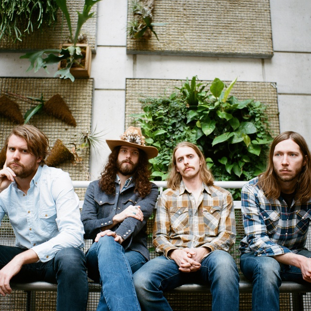 THE SHEEPDOGS PHOTO